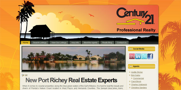 web site design Century21Professional